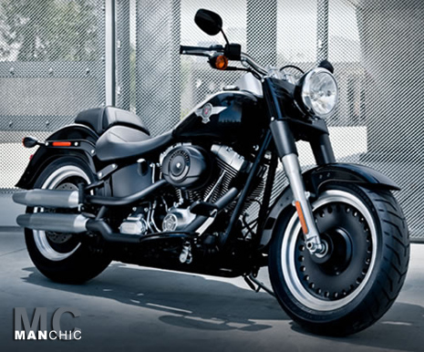 2010 Harley Davidson Softail